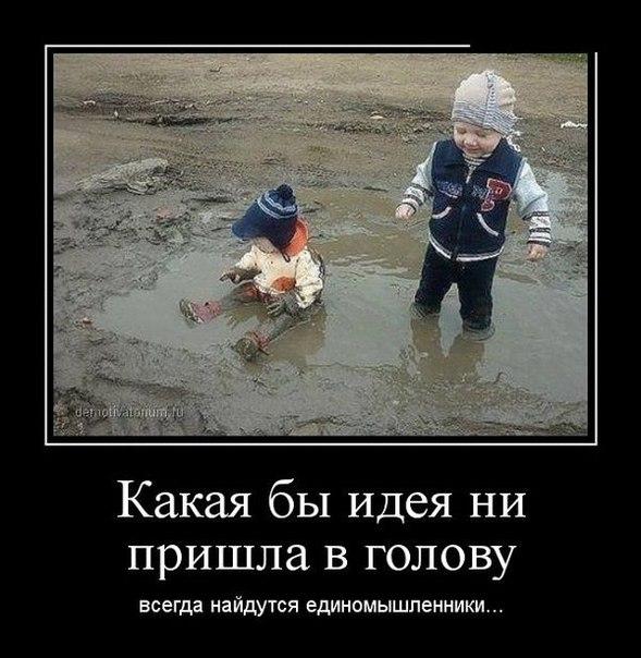 http://cs605231.vk.me/v605231143/460f/e2RGy5CGaAc.jpg height=476